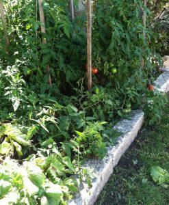 anitique granite curbing garden bed