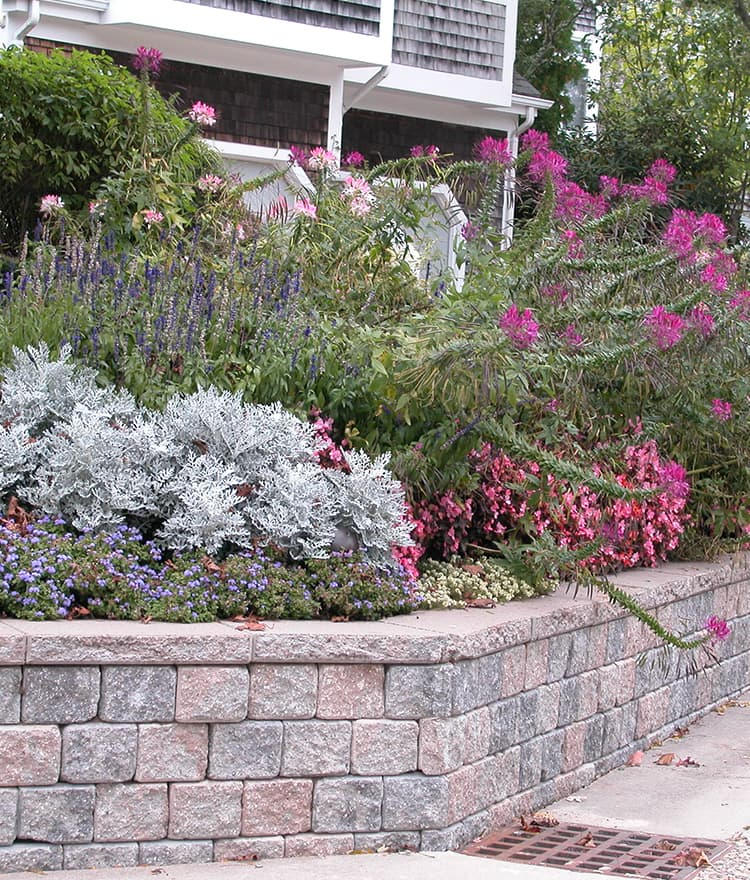 Retaining Walls Cape Cod Provincetown Chatham Osterville. Living Room Bar W Hotel. Leather Sofa Living Room Pictures. Living Room Furniture Sectional Sets. Elegant Curtains For Living Room Uk. Hacks For Living Room. The Living Room In Spanish. Living Room Designs Indian House. Small Living Room Closet Ideas