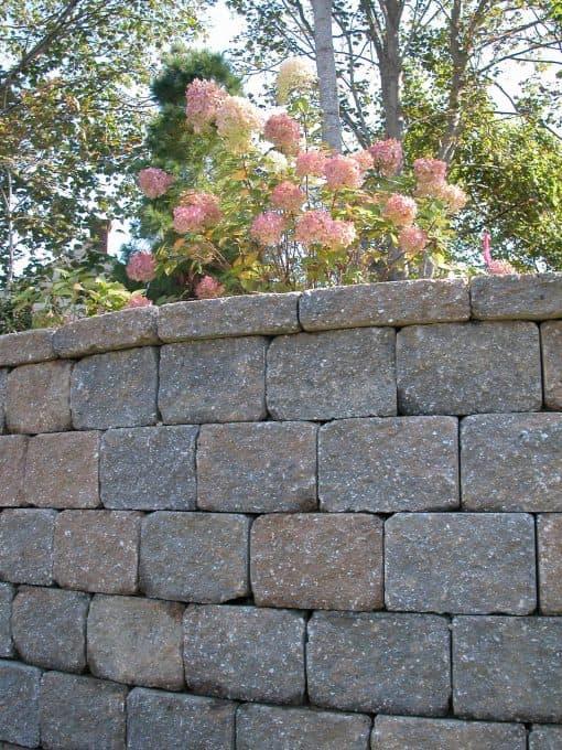 retaining wall tumbled stonewall vineyard blend