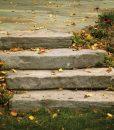 rosetta-steps-cape-cod