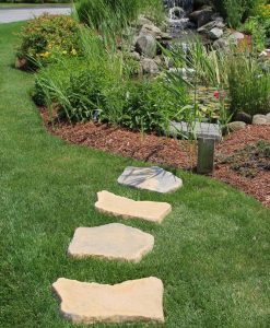 variegated tan stepping stone