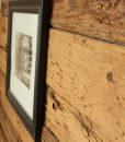 mushroom-wood-close-pic