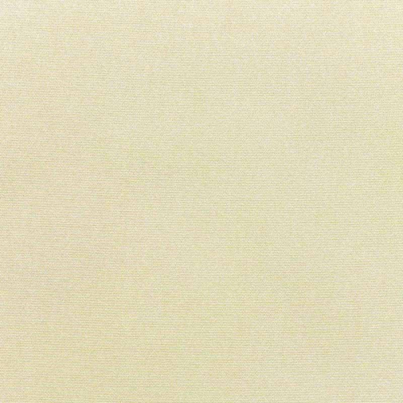 Canvas Canvas Fabric