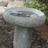 Stone Bird Bath with Two Turtles