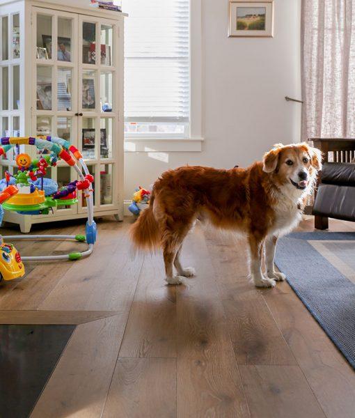 Family House with Sawyer Mason Miacomet installed