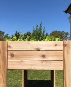 cedar planter kit garden