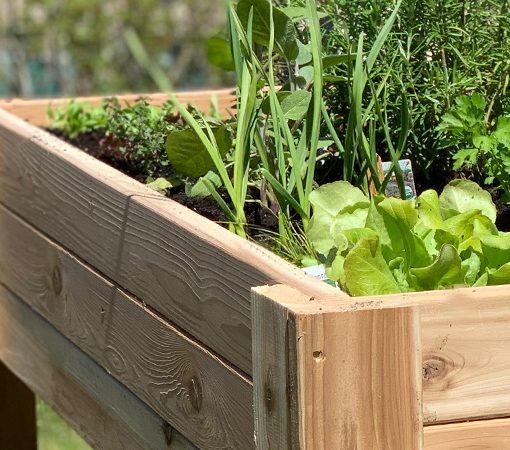 cedar garden stannding kit